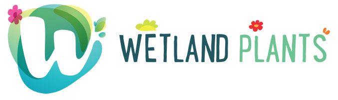 Wetland Plants Logo 1